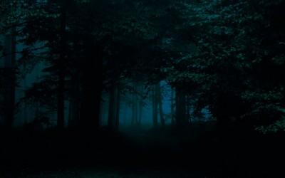 Wiara poszła w las
